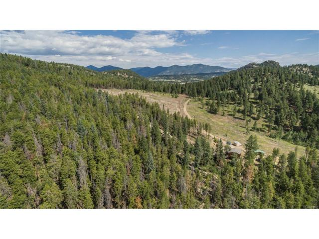 6600 Bluebell Lane, Evergreen, CO 80439 (MLS #2513738) :: 8z Real Estate