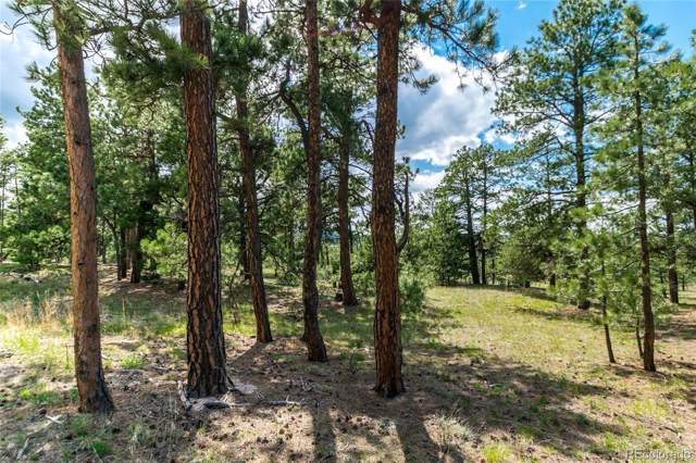 19165 Hilltop Pines Path, Monument, CO 80132 (#2515429) :: Bring Home Denver with Keller Williams Downtown Realty LLC
