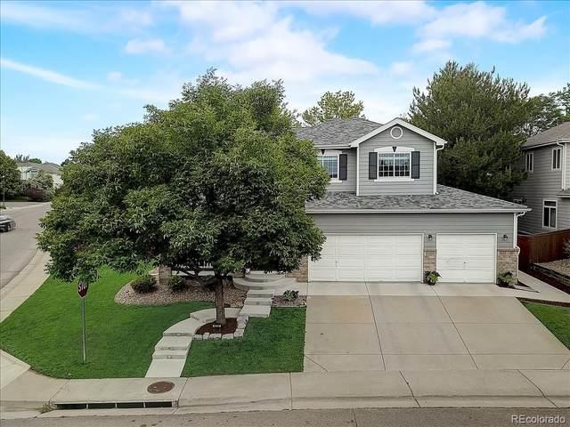 4292 Lark Sparrow Street, Highlands Ranch, CO 80126 (#2516683) :: Portenga Properties