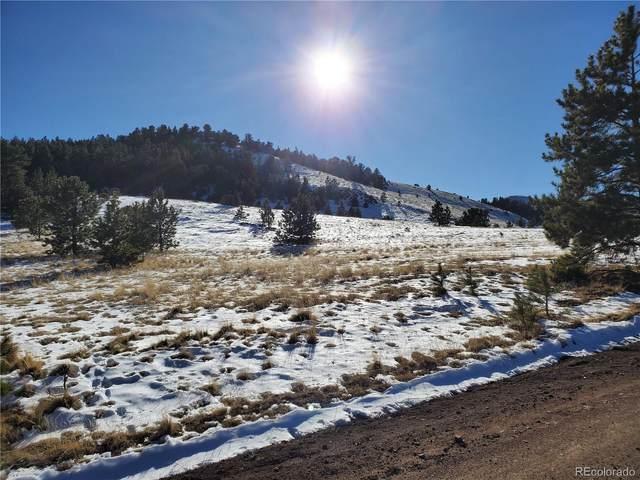 682 Nancy Ann Arroyo, Guffey, CO 80820 (#2520900) :: iHomes Colorado