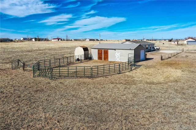 1134 Buffalo Run Road, Calhan, CO 80808 (MLS #2523893) :: 8z Real Estate