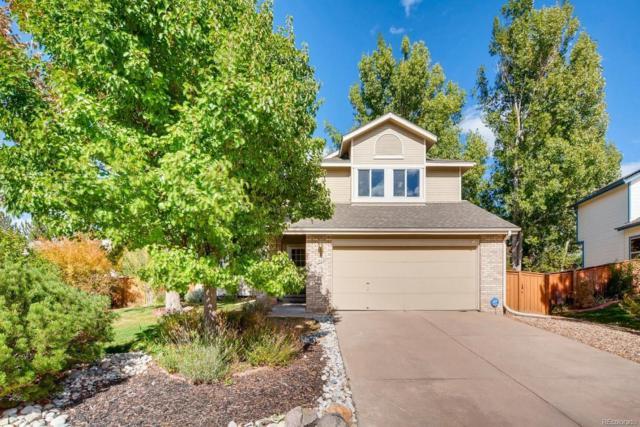 1503 Briar Circle, Highlands Ranch, CO 80126 (#2526992) :: House Hunters Colorado