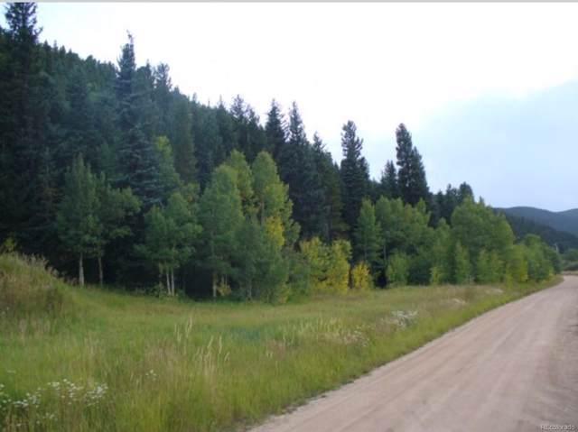 267 Beaver Creek Drive, Nederland, CO 80466 (MLS #2528393) :: 8z Real Estate