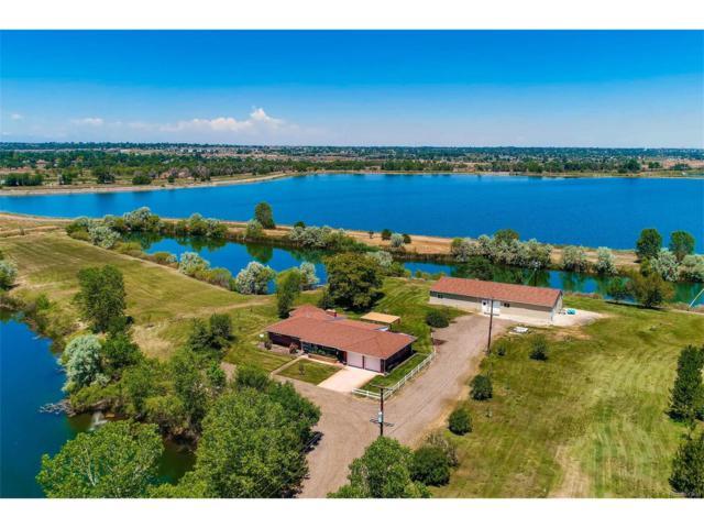 5591 E 88th Avenue, Henderson, CO 80640 (MLS #2528456) :: 8z Real Estate