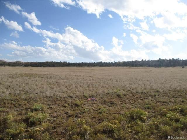 2552 Mesa Road, Hartsel, CO 80449 (#2530929) :: James Crocker Team