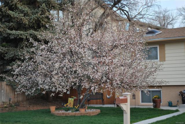 11463 W Briarwood Drive, Lakewood, CO 80226 (#2536682) :: Wisdom Real Estate
