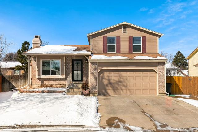 8465 Curlycup Place, Parker, CO 80134 (#2539277) :: The Heyl Group at Keller Williams