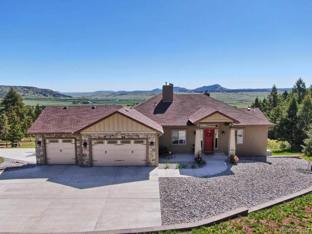 15365 Sierra Pines Lane, Larkspur, CO 80118 (#2539482) :: The Healey Group