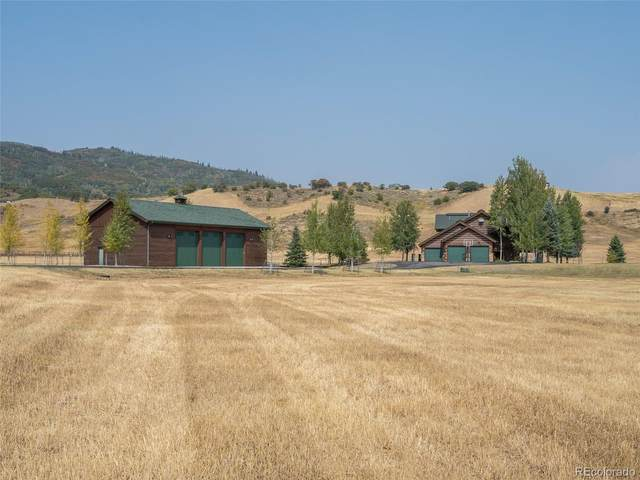 33355 Emerald Meadows Drive, Steamboat Springs, CO 80487 (#2543501) :: Wisdom Real Estate