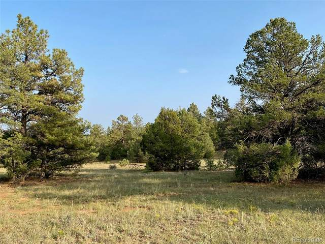 Tbd Rancho La Garita, Weston, CO 81091 (#2544475) :: Bring Home Denver with Keller Williams Downtown Realty LLC