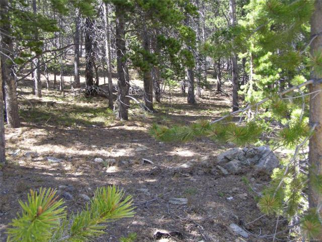 Lot 271 Green Court, Idaho Springs, CO 80452 (MLS #2544738) :: 8z Real Estate
