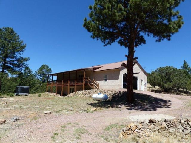 317 Sugarloaf Road, Westcliffe, CO 81252 (#2545391) :: The Galo Garrido Group