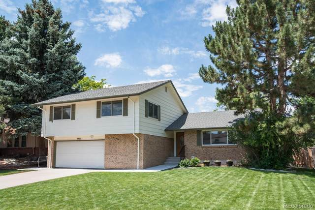 6405 S Jay Way, Littleton, CO 80123 (MLS #2545900) :: 8z Real Estate