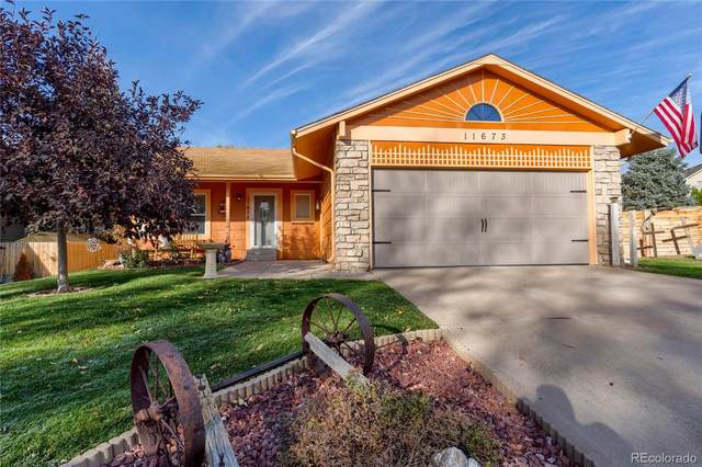 11673 Josephine Circle, Thornton, CO 80233 (MLS #2547696) :: 8z Real Estate