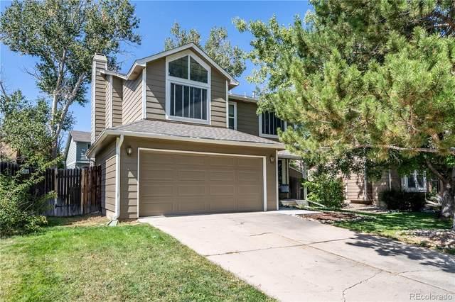 5311 E Courtney Avenue, Castle Rock, CO 80104 (#2547720) :: Symbio Denver