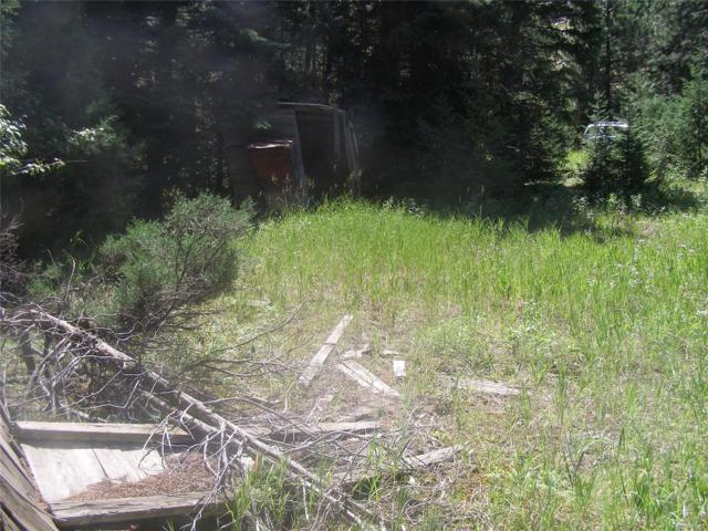 Lot 6 Tonn Valley Drive, Idaho Springs, CO 80452 (#2548307) :: HomePopper