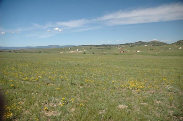 TBD 1 Dahberg, Franktown, CO 80166 (#2550782) :: Bring Home Denver with Keller Williams Downtown Realty LLC