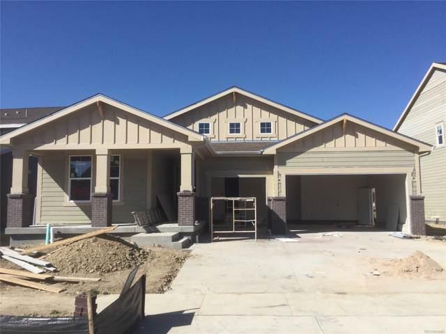 2425 Tyrrhenian Circle, Longmont, CO 80504 (MLS #2551577) :: 8z Real Estate