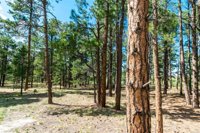 19005 Hilltop Pines Path, Monument, CO 80132 (#2553969) :: The Heyl Group at Keller Williams