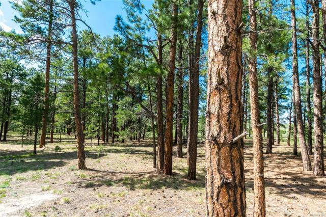 19005 Hilltop Pines Path, Monument, CO 80132 (#2553969) :: James Crocker Team