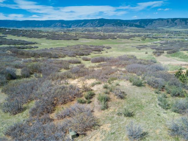 3418 Bear Canyon Circle, Sedalia, CO 80135 (MLS #2555816) :: 8z Real Estate