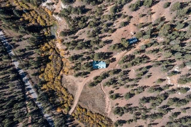 15542 S Elk Creek Road, Pine, CO 80470 (#2561712) :: The Colorado Foothills Team | Berkshire Hathaway Elevated Living Real Estate