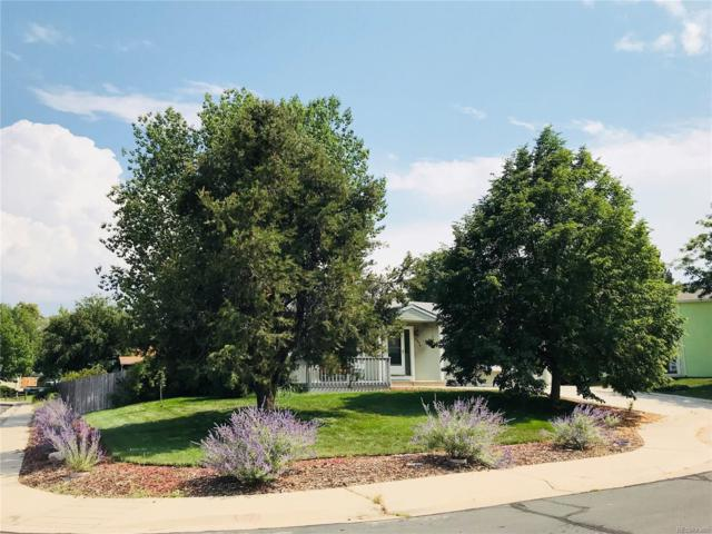 4374 E 118th Place, Thornton, CO 80233 (#2561859) :: The City and Mountains Group