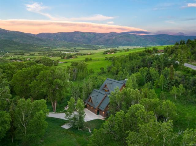 31680 Aspen Ridge Road, Steamboat Springs, CO 80487 (#2561967) :: The Healey Group