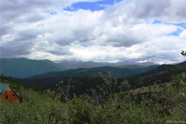 00 New York Mine Road, Idaho Springs, CO 80425 (#2564374) :: Chateaux Realty Group