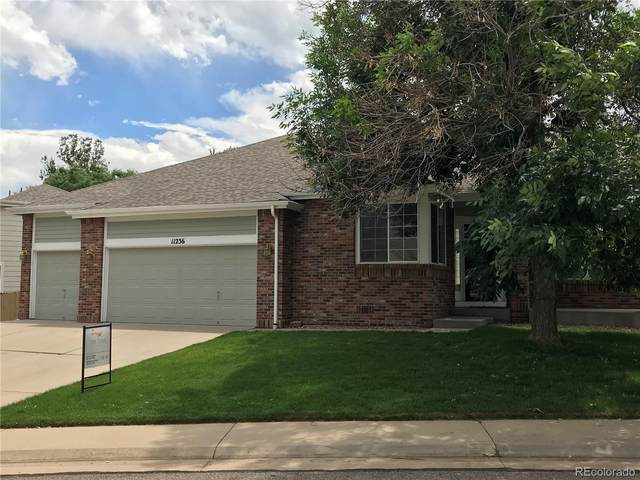 11236 W Ford Drive, Lakewood, CO 80226 (MLS #2565672) :: 8z Real Estate