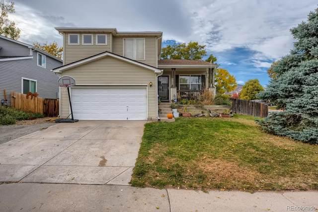 8195 Maple Drive, Littleton, CO 80125 (#2565710) :: The HomeSmiths Team - Keller Williams