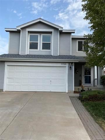 9755 Marmot Ridge Circle, Littleton, CO 80125 (#2565918) :: Peak Properties Group