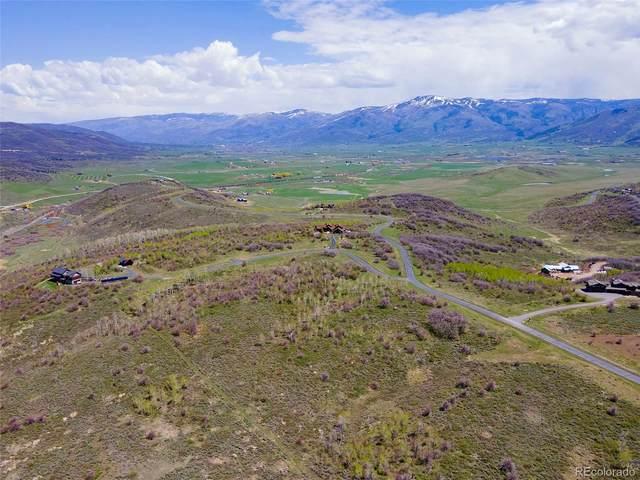 29175 Buffalo Trail Road, Steamboat Springs, CO 80487 (#2566815) :: HomeSmart