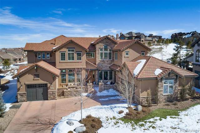 10816 Rainribbon Road, Highlands Ranch, CO 80126 (MLS #2569852) :: Wheelhouse Realty
