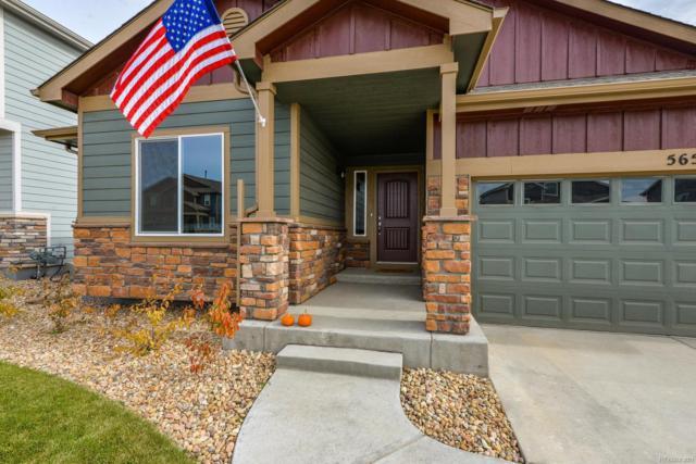 5657 Bexley Drive, Windsor, CO 80550 (MLS #2571974) :: 8z Real Estate