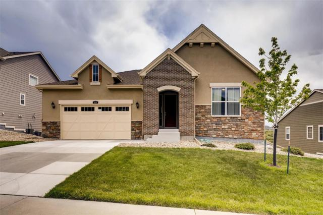 924 Eveningsong Drive, Castle Rock, CO 80104 (#2575580) :: The HomeSmiths Team - Keller Williams
