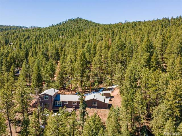 1339 Cinnamon Bear Road, Sedalia, CO 80135 (#2577478) :: The Dixon Group