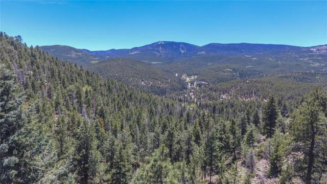 32825 - 1 Timber Ridge Road, Evergreen, CO 80439 (#2577781) :: The Peak Properties Group