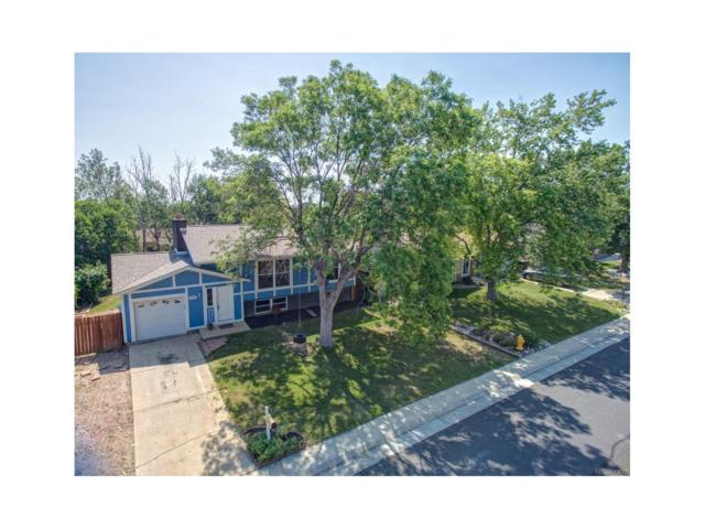 1766 Cottonwood Street, Broomfield, CO 80020 (MLS #2577844) :: 8z Real Estate