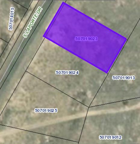 458,466,474 S Laporte Drive, Pueblo West, CO 81007 (MLS #2578205) :: 8z Real Estate