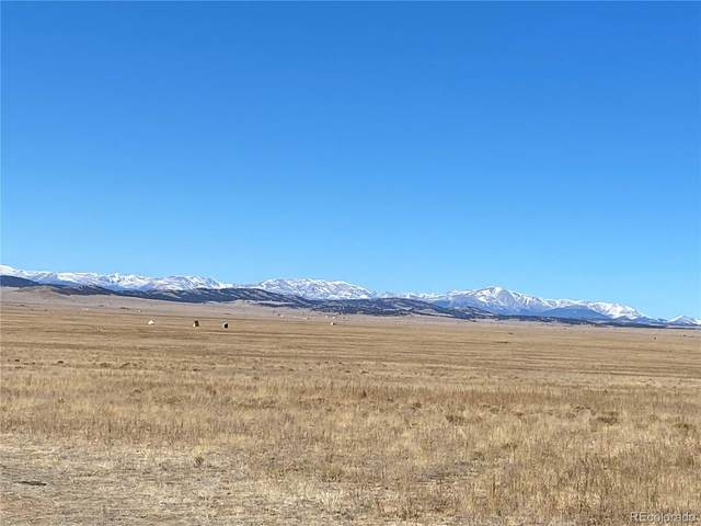 2160 High Chaparrel Road, Lake George, CO 80827 (#2578226) :: Sultan Newman Group
