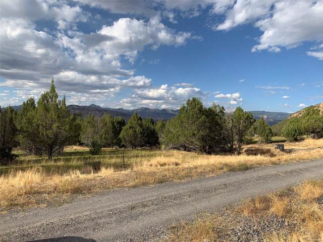 10789 52 1/2 Road, Molina, CO 81646 (MLS #2579945) :: 8z Real Estate