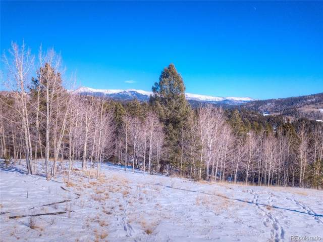 696 May Queen Drive, Cripple Creek, CO 80813 (#2584438) :: The DeGrood Team