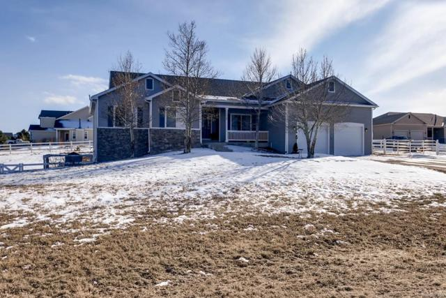 2228 Red Maple Circle, Parker, CO 80138 (#2584572) :: Compass Colorado Realty