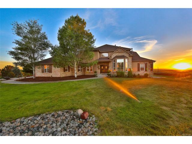 20395 E Top T Ranch Place, Parker, CO 80134 (MLS #2584699) :: 8z Real Estate