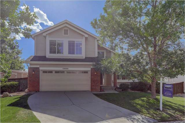 10228 Hexton Court, Lone Tree, CO 80124 (#2590192) :: The DeGrood Team