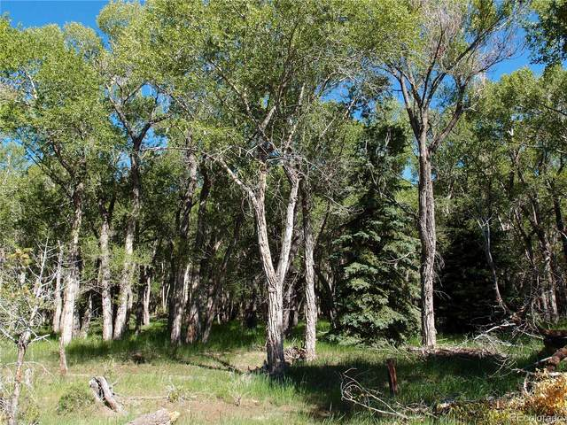0 Cumbre Court, South Fork, CO 81154 (#2591186) :: Berkshire Hathaway HomeServices Innovative Real Estate