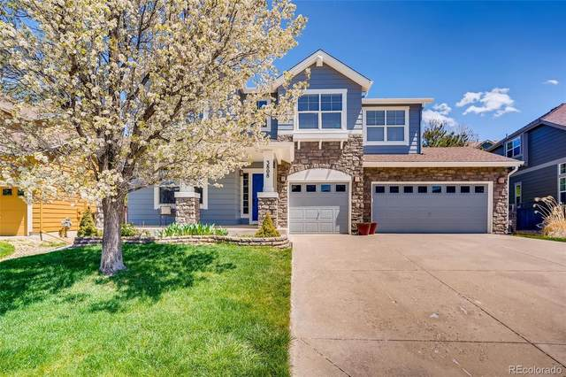 3808 Sunchase Drive, Castle Rock, CO 80109 (#2593333) :: Sultan Newman Group