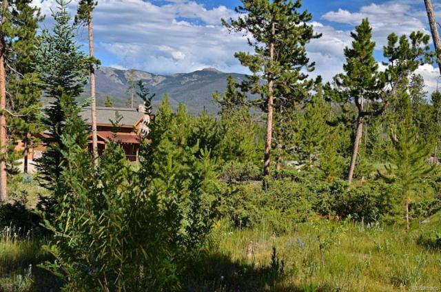 259 Gcr 4571, Grand Lake, CO 80447 (#2593637) :: 5281 Exclusive Homes Realty