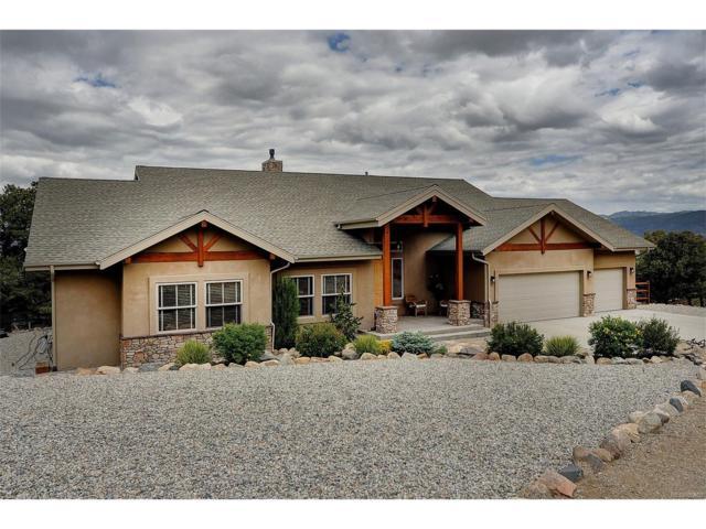 8150 Buck Run, Salida, CO 81201 (MLS #2593740) :: 8z Real Estate